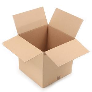 Thung Carton (1)
